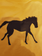 Personalised kid's yellow horse silhouette t-shirt