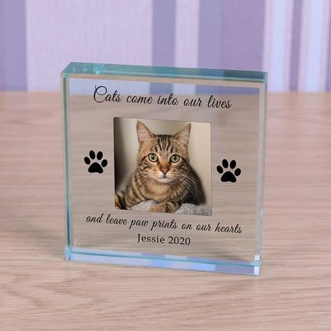 Personalised Cat Paw Prints Photo Glass Token