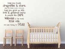 May You Touch Dragonflies...Wall Art Quote, Wall Sticker, Modern Decal Transfer