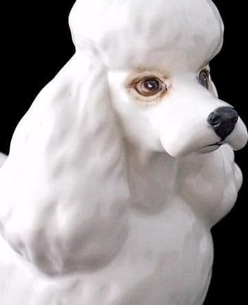 Beswick White Poodle Dog Figure Model Number 2339