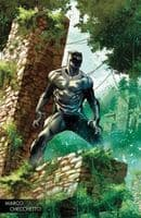 Black Panther #170 - Checcetto Young Guns Variant Cover