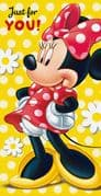 Minnie Mouse Money Wallet Card