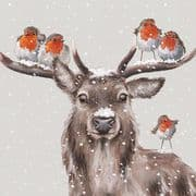 Wrendale Festive Friends Luxury Box of 8 Christmas Cards