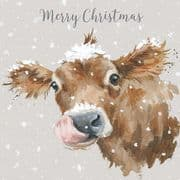 Wrendale First Taste Of Snow Luxury Box of 8 Christmas Cards