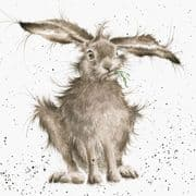 Wrendale Hare-Brained Hare Greeting Card