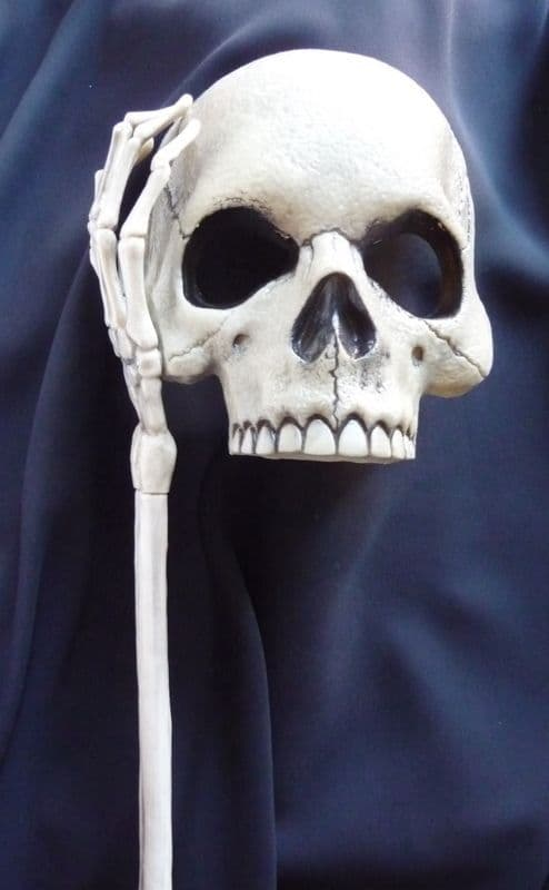 Skull Mask held with a stick