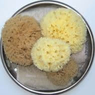 Bath - Honeycomb from £10.99